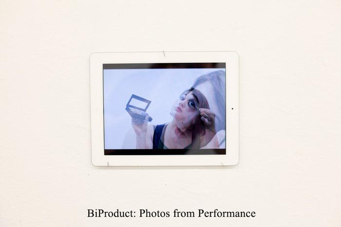2013_BiProduct_Slideshow