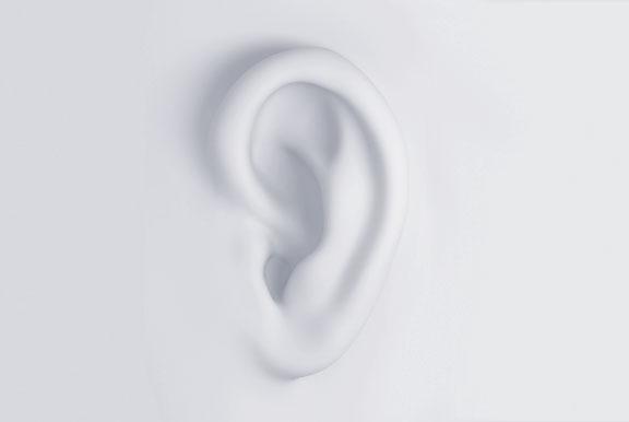 human-ear
