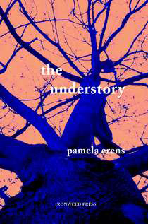 THE UNDERSTORY by Pamela Erens reviewed by Ashlee Paxton-Turner