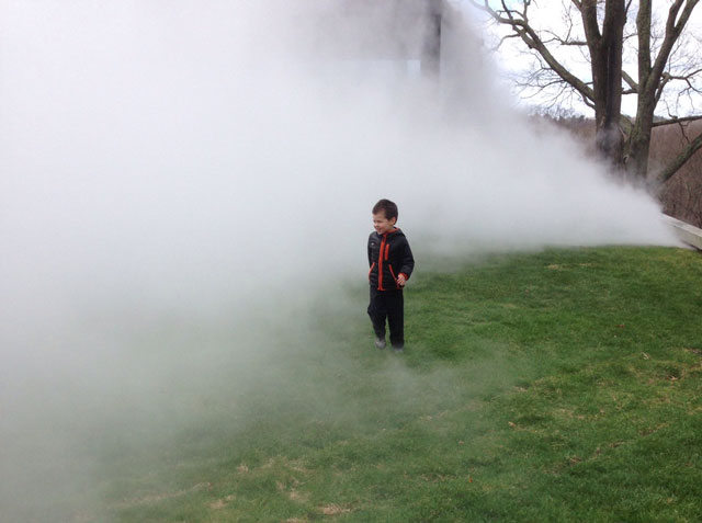The author's son in the fog at the Philip Johnson Glass House, April 2014.