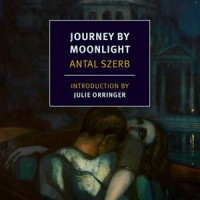 JOURNEY BY MOONLIGHT by Antal Szerb reviewed by Nathaniel Popkin