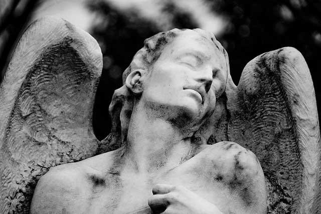 ATROPHY by J J  Anselmi • Cleaver Magazine