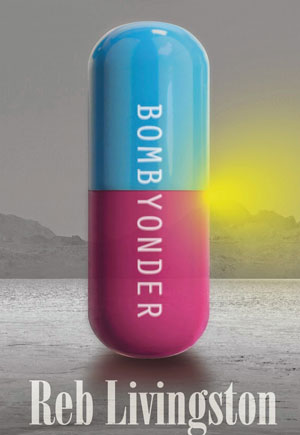 Bombyonder cover art. A large pill half blue and half purple standing covering the yellow sun