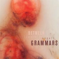 BETWEEN GRAMMARS by Danielle Vogel reviewed by Amanda Hickok