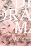 DIORAMA by Rocío Cerón reviewed by Johnny Payne