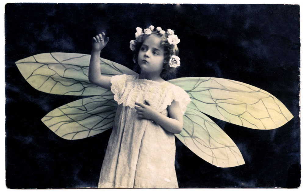 Vintage child with flower crown and dragonfly wings