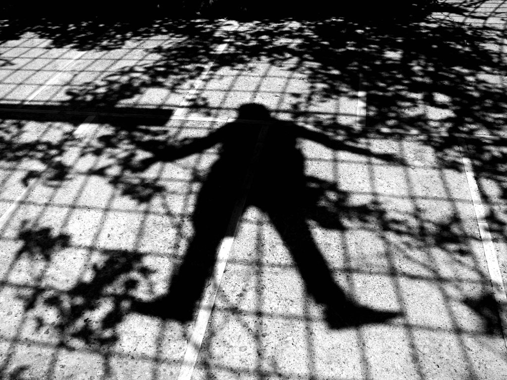 Shadow on pavement