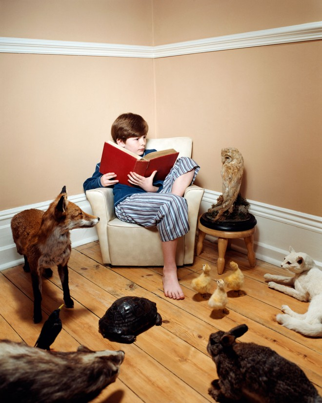 Boy reading with taxidermied animals
