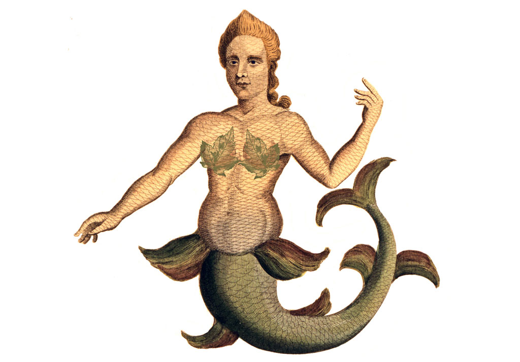 Engraving of mermaid with green tail