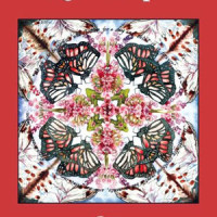 KALEIDOSCOPE, poems by Tina Barr, reviewed by Jeff Klebauskas