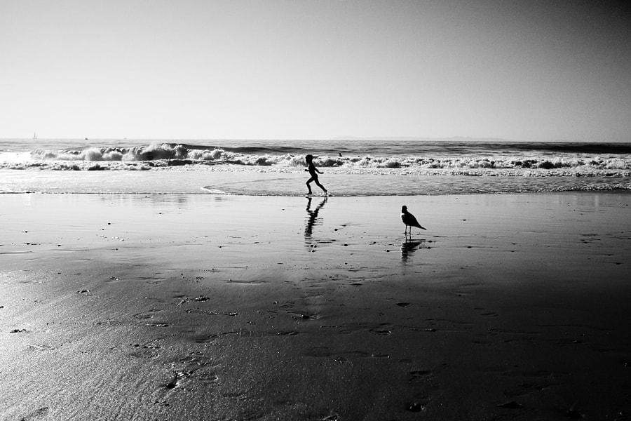 Child and bird on a beach