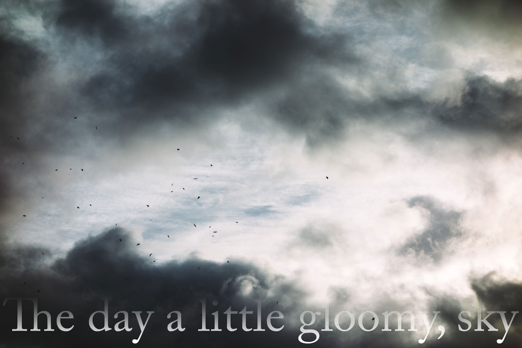 A gloomy sky with white and grey clouds and silhouettes of birds flying by, with the title of the piece faded into the bottom of the image