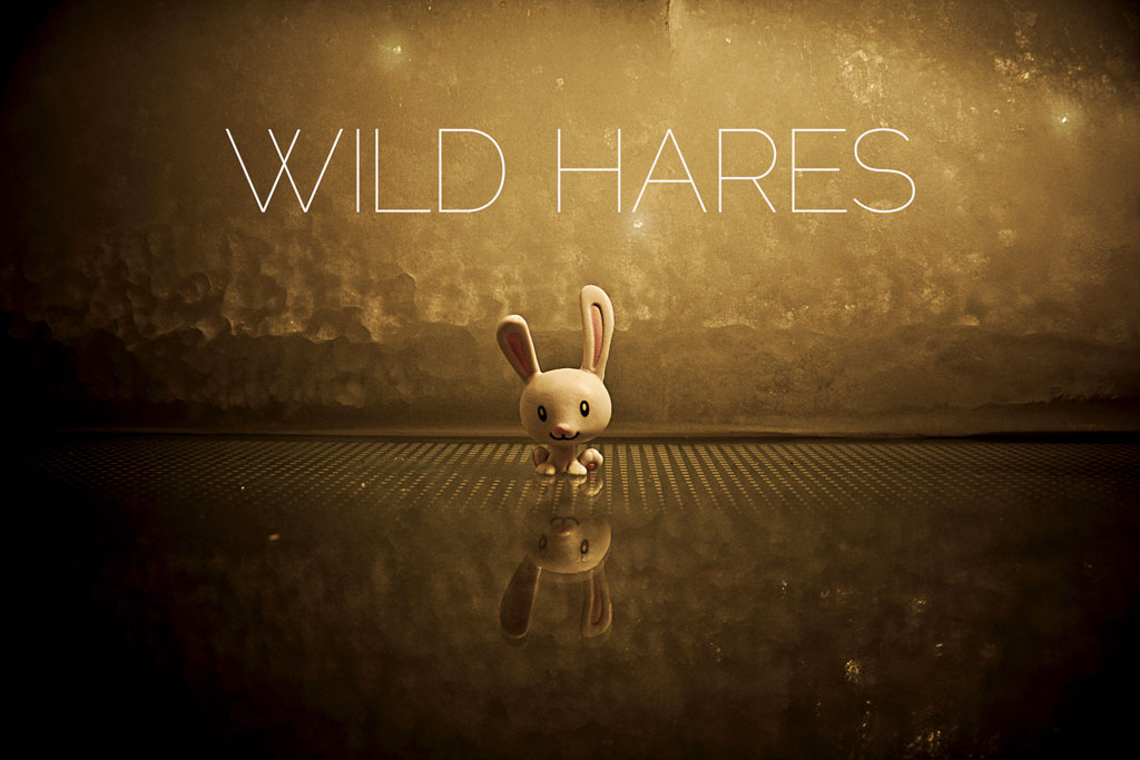 "Toy bunny on mirrored surface with caption ""Wild Hares"""
