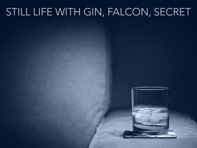 STILL LIFE WITH GIN, FALCON, SECRET by Ed Taylor