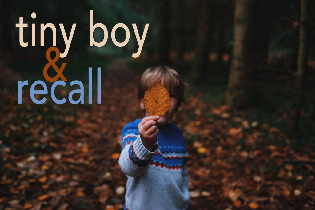 Child holding autumn leaf in front of his face in a dark forest, with the title of the piece on the left