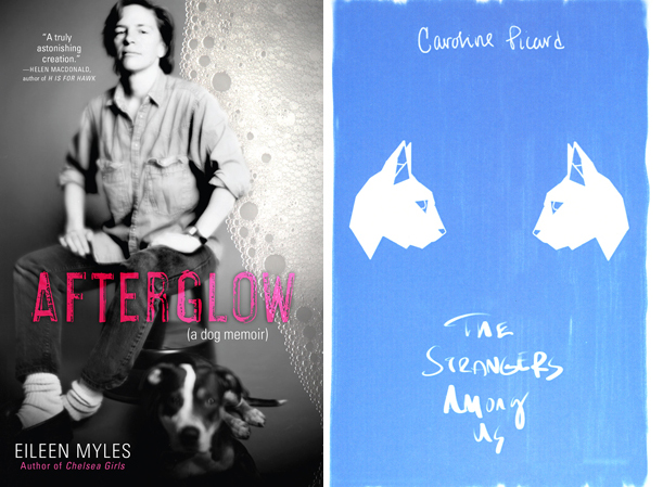 AFTERGLOW by Eileen Myles and THE STRANGERS AMONG US by Caroline Picard, reviewed by Jordan A. Rothacker