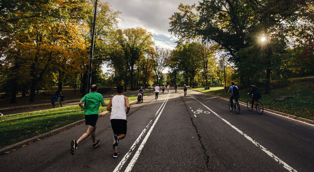 people in athletic clothes running on road lined with trees