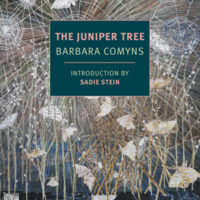 THE JUNIPER TREE, a novel by Barbara Comyns, reviewed by Allegra Armstrong