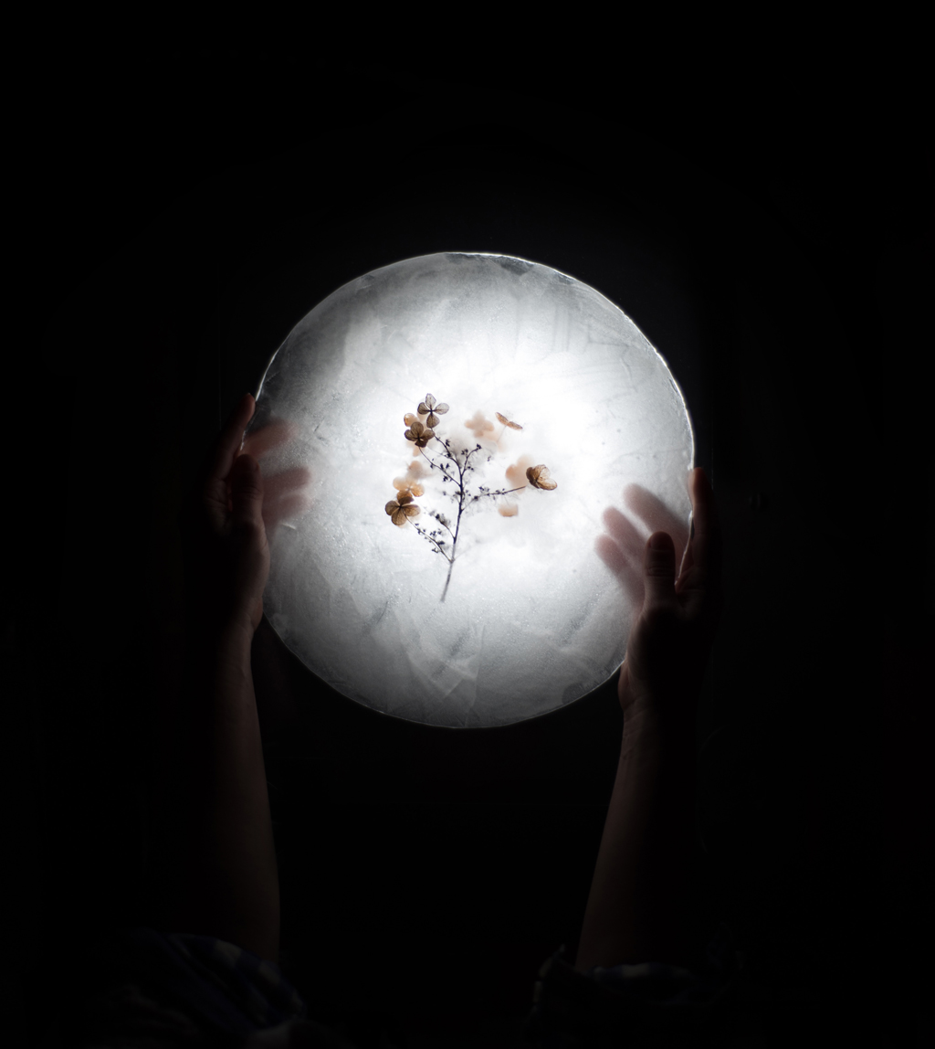 Hand holding a ball of light with small flowers inside it