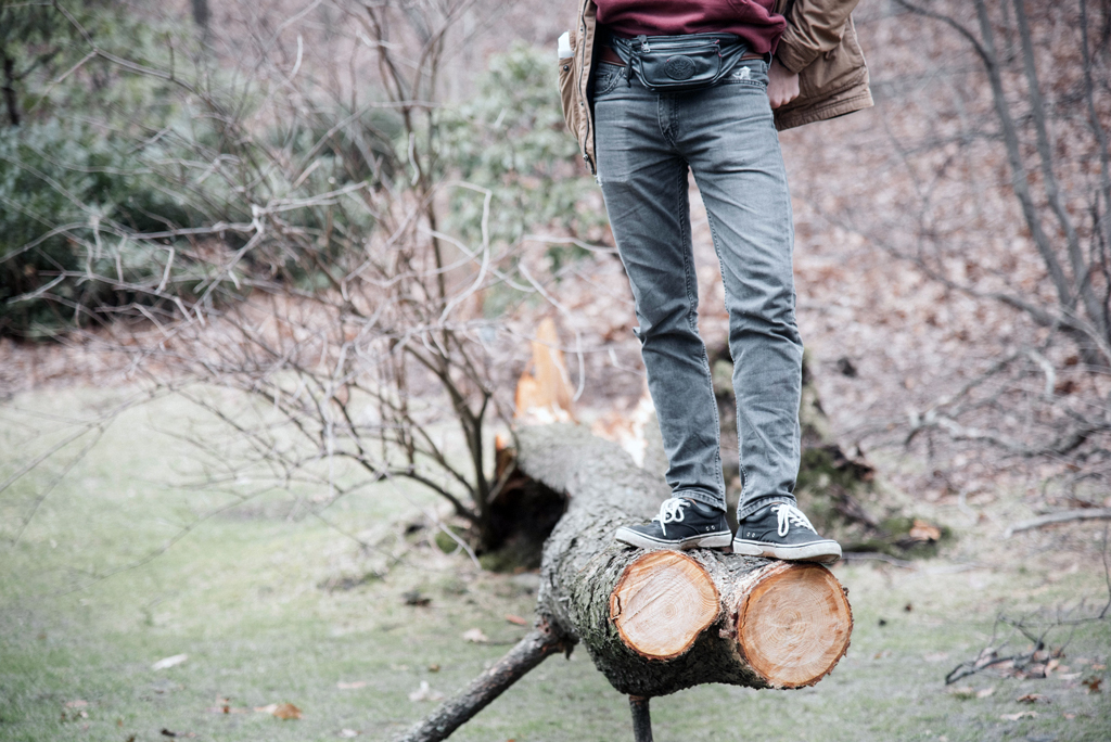 Person wearing jeans and tennis shoes standing on a freshly cut log