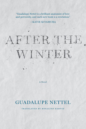 After the Winter cover art. The title text in front of a smooth sheet of ice