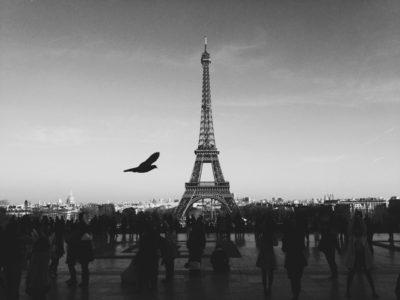 WAITING FOR YOU IN PARIS by Jared Levy