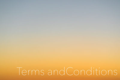 TERMS AND CONDITIONS by Heather Holmes