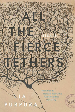 All the Fierce Tethers book jacket