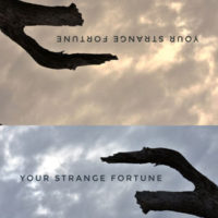 Jacket Cover for Your Strange Fortune