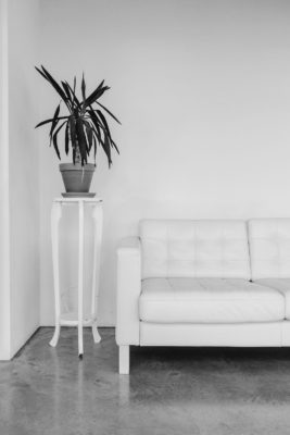 living room with sofa, plant