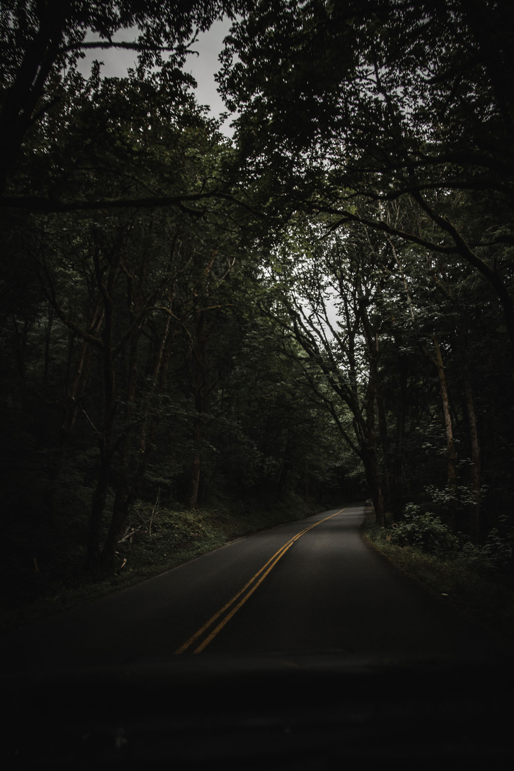 a lonely road at dusk or dawn