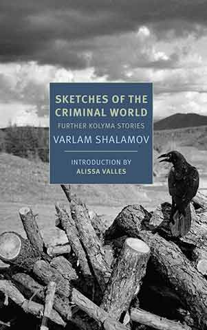 Sketches of the Criminal World Book Jacket. A black-and-white photo of a raven sitting on tree logs in front of empty desert