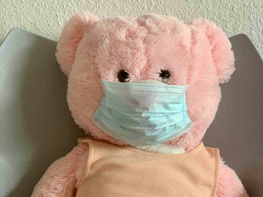 pink teddy bear in blue face mask