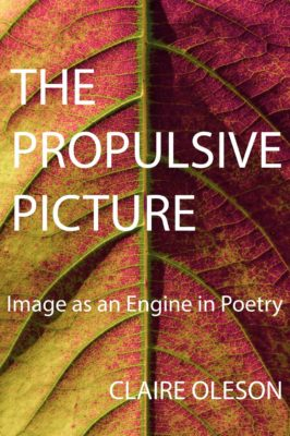 THE PROPULSIVE PICTURE, Image as an Engine in Poetry, a Workshop taught by Cleaver Poetry Editor Claire Oleson | September 19 to October 24