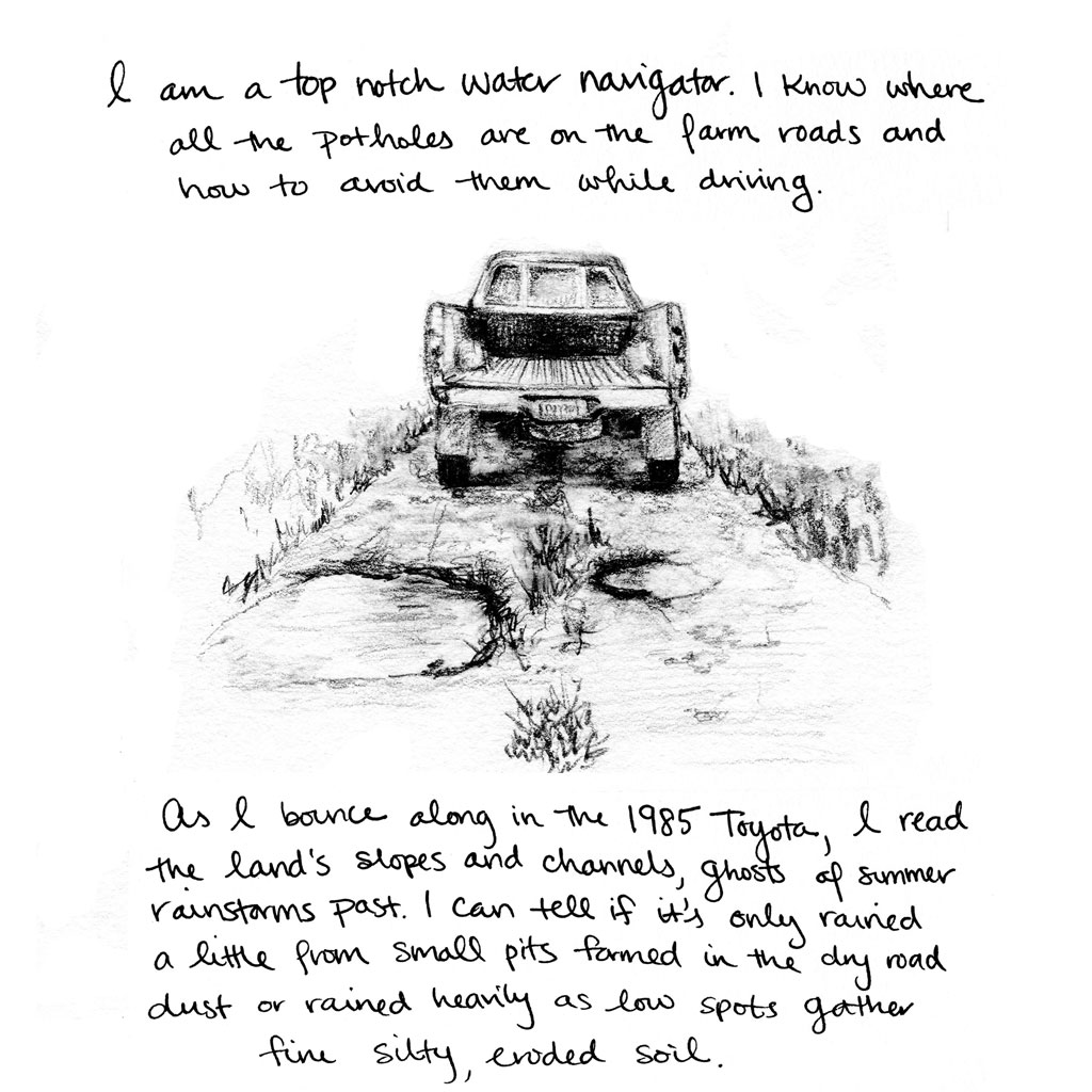 I am an expert water navigator. I know where all the potholes are on the farm roads and how to avoid them while driving. As I bounce along in the 1985 Toyota, I read the land's slopes and channels, ghosts of summer rainstorms past. I can tell if it's only rained a little from small pits formed in the dry road dust or rained heavily as low spots gather fine silty eroded soil.
