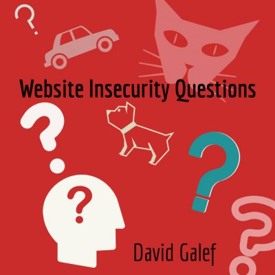 WEBSITE INSECURITY QUESTIONS by David Galef