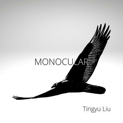 MONOCULAR by Tingyu Liu