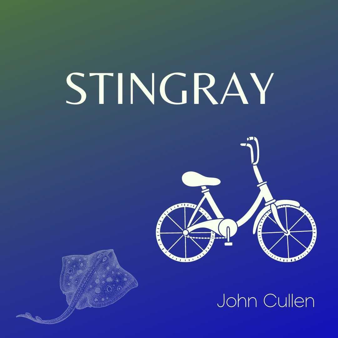 STINGRAY by John Cullen