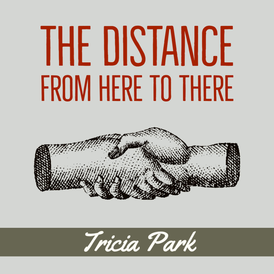 THE DISTANCE FROM HERE TO THERE by Tricia Park