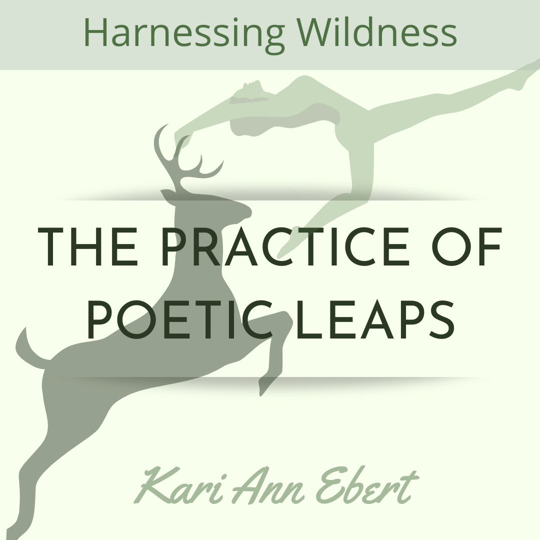 HARNESSING WILDNESS: THE PRACTICE OF POETIC LEAPS , a Craft Essay by Kari Ann Ebert